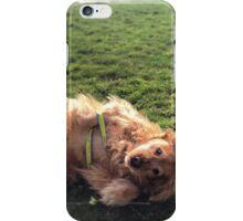 Golden Retriever in May iPhone Case/Skin