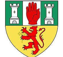 County Antrim Coat of Arms  by abbeyz71
