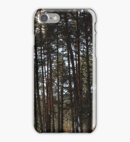 Winter Pines iPhone Case/Skin
