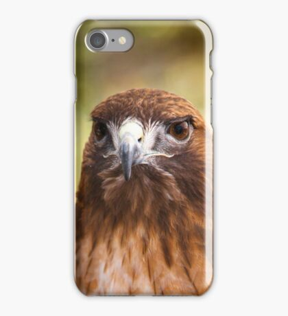 Red Tail Hawk has got it's eyes on you iPhone Case/Skin