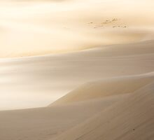 sand hills by Anne Scantlebury