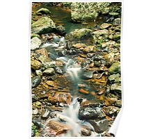Creek bed at Natural Bridge Poster