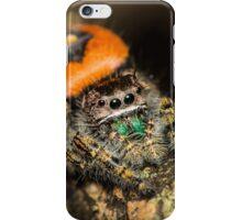 Jumping Arach iPhone Case/Skin