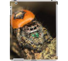 Jumping Arach iPad Case/Skin