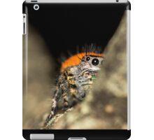 Peek-A-Boo Spider iPad Case/Skin