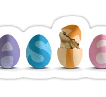 Hatching Easter Eggs Sticker
