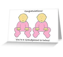 Congratulations you're a  Grandparent to twin girls. Greeting Card