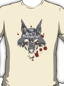The North Remembers T-Shirt