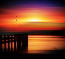 Just a Dream by Liz Scott