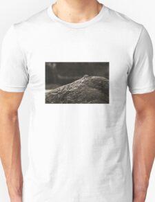Everything Zen T-Shirt