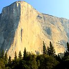 El Capitan - Yosemite National Park by Honor Kyne