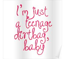 Just A Teenage Dirtbag Baby Poster