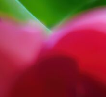 Colors of Spring Abstract Triptych Section 1 by Menega  Sabidussi