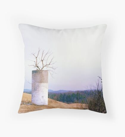 Tree in a Silo in January Throw Pillow