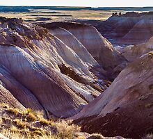 Blue Mesa - 2 by BGSPhoto