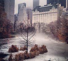 iPhone Rolling Fog by Randy  LeMoine