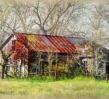 Abandoned Farmhouse by Savannah Gibbs