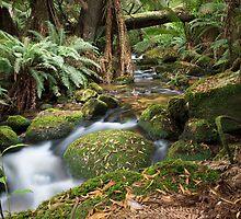 Green Creek by BradBaker