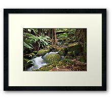 Green Creek Framed Print