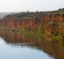 Murray River S.A Cliffs by Dave  Hartley