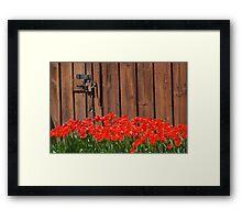 Read My Tulips  Framed Print