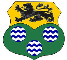 County Leitrim Coat of Arms  by abbeyz71