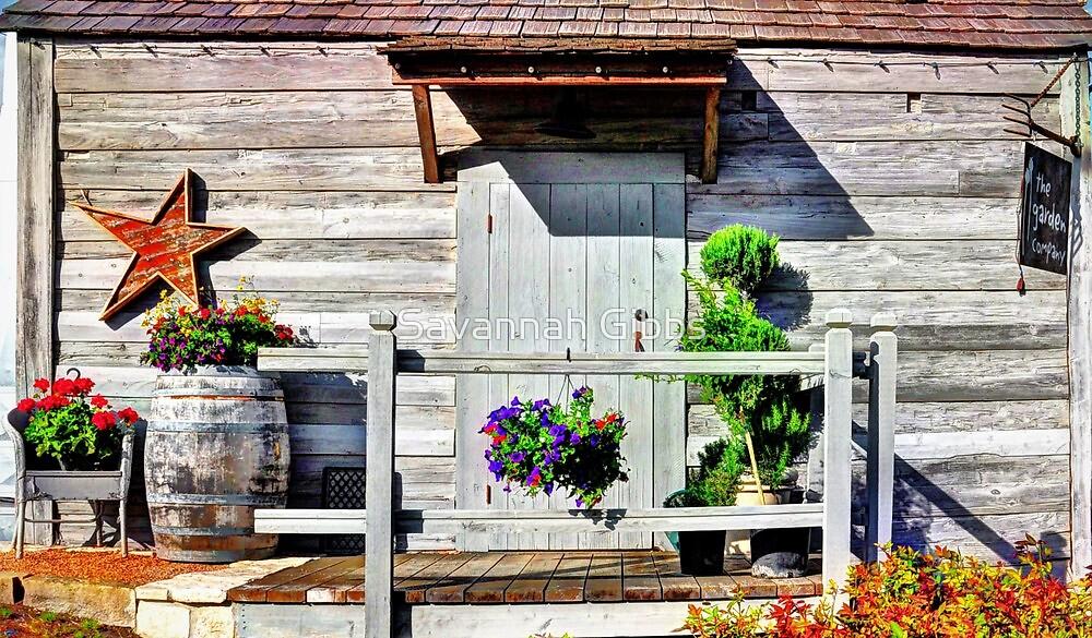 Antique House by Savannah Gibbs