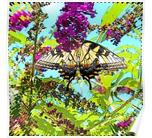 Yellow Butterfly on Flower Poster