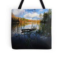 Aligator Snapping Turtle Retirement Home Tote Bag