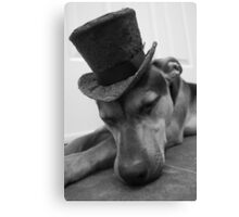 Sleeping in Style Canvas Print