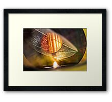 Can't Stand the Tropics Framed Print