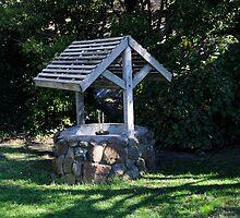 Arthurs Seat Wishing Well. 2. by Raymond J. Marcon
