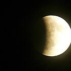 Lunar Eclipse by jozi1