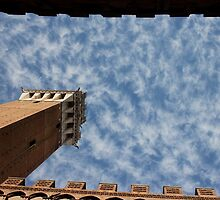 Torre del Mangia 2 by solanna7