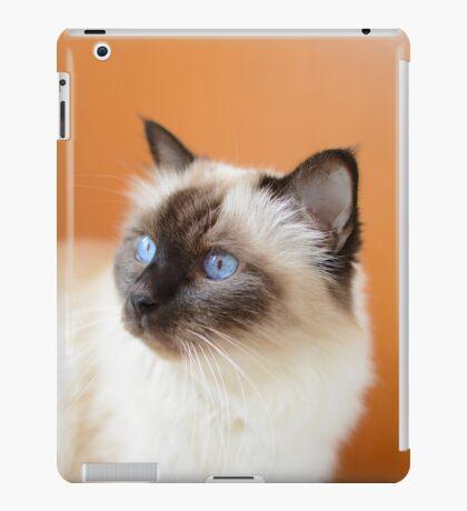 Eldest iPad Case/Skin