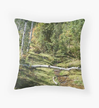 Peaceful Scene Throw Pillow