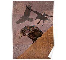 Crow invasion 2 Poster