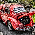 1959 Volkswagen Super Beetle 1300 by Chris L Smith