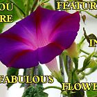 Fabulous Flower Banner  by hootonles