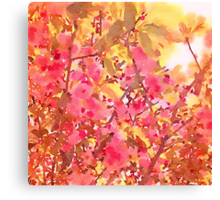 Cherry Blossom Canopy Watercolor Canvas Print