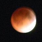 Full Blood Moon Lunar Eclipse, Just Begun  by Navigator
