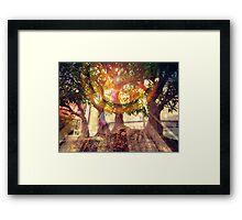 Bonsai Magic Framed Print