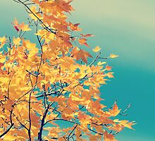 Pretty Autumn Colors 1 by ElleEmDee