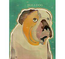 the bulldog  Photographic Print