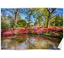 Spring Lake Poster