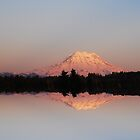 Mt. Rainier Reflections by Tori Snow