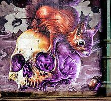 Skull n Squirrel by Stevie B