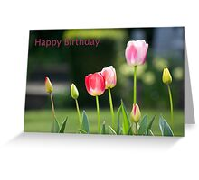 Happy Birthday Card with tulips Greeting Card