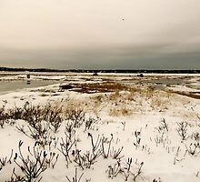 Snowland by GleaPhotography