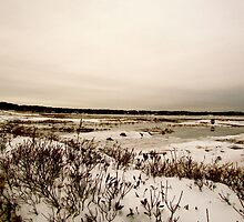 Snowland 2 by GleaPhotography